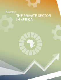 THE PRIVATE SECTOR IN AFRICA