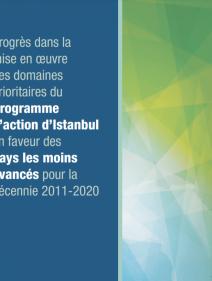 Progrès dans la mise en oeuvre des domaines prioritaires du programme d'action d'Istanbul en faveur des pays les moins avancés pour la décennie 2011-2020