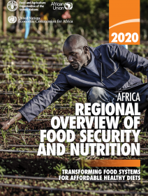 African regional overview of food security and nutrition 2020: transforming food systems for affordable health diets
