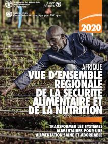 Afrique vue d'ensemble régionale de la sécurité alimentaire et de la nutrition 2020: transformer les systèmes alimentaires pour une alimentation saine et abordable