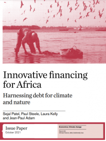 Innovative financing for Africa: harnessing debt for climate and nature