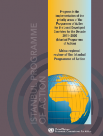 Progress in the implementation of the priority areas of the Programme of Action for the Least Developed Countries for the Decade 2011–2020 (Istanbul Programme of Action)