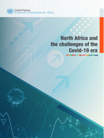 North Africa and the challenges of the Covid-19 era