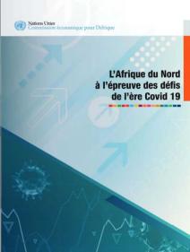 L'Afrique du Nord à l'épreuve des défis de l'ère Covid 19