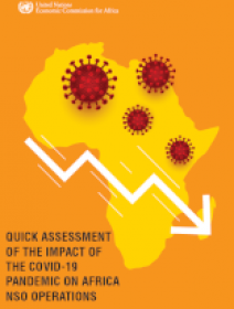 Quick Assessment of the Impact of the COVID-19 Pandemic on Africa National Statistical Offices Operations
