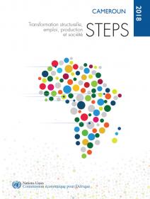 Transformation structurelle, emploi, production et société - STEPS Cameroun 2018
