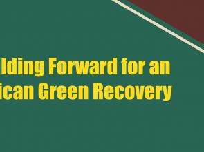 ECA's Building Forward for an African Green Recovery outlines bolder intra-African trade and climate-smart measures for continent's recovery