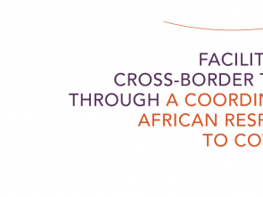 COVID-19: New ECA report calls on governments to harmonize trade & cross-border policies
