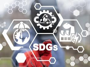 Africa's economic downturn affects continent's progress in implementing SDGs