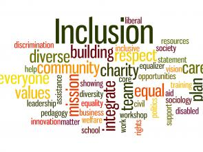 ECA making inroads in implementing Disability Inclusion Strategy