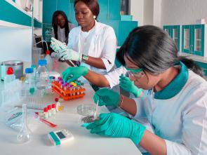 International Day of Women and Girls in Science, 11 February