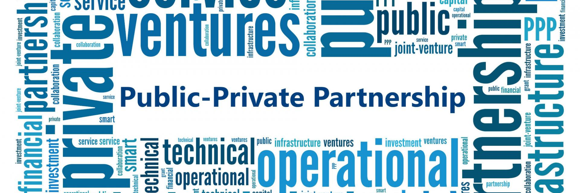 Experts push for strong public-private partnerships to build resilient post-COVID-19 economies