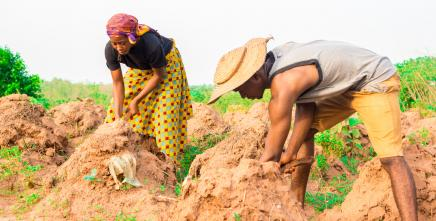 Calls for African Governments to intensify efforts to build resilience and protect livelihoods