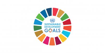 New ECA study shows Africa may not meet SDG7 targets